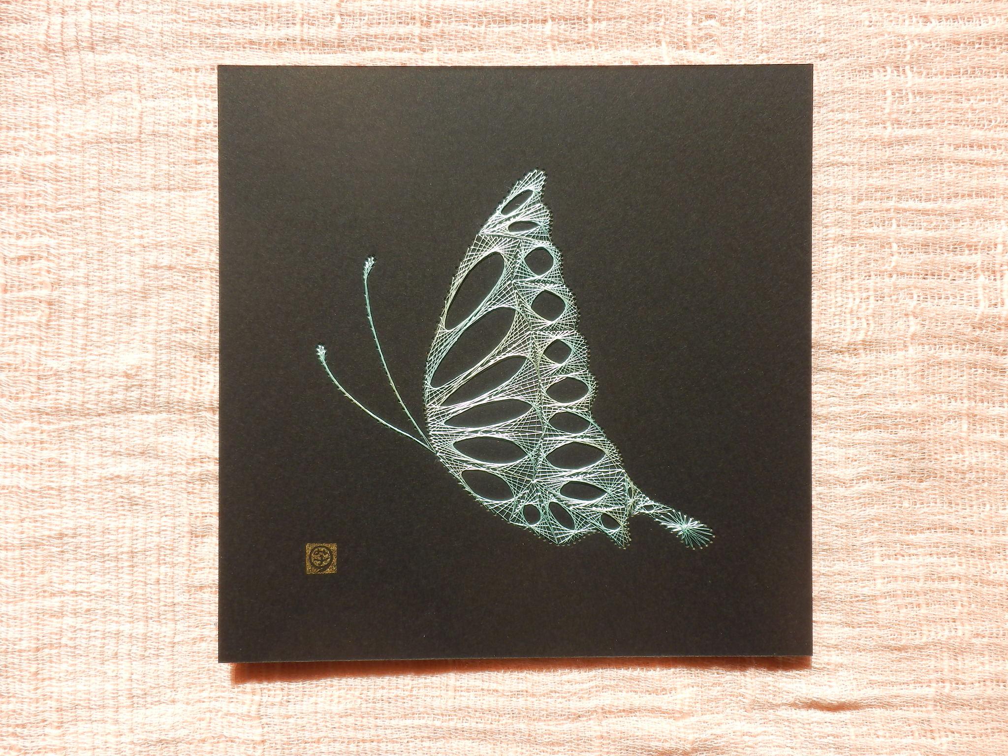 薄緑の蝶1